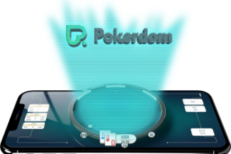 ПокерДом голограмма